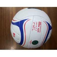 VolleyBall Beach Ball smash ball volley ball idea ball