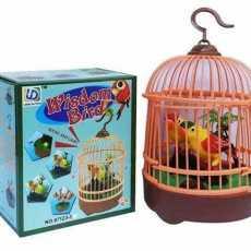 Voice Activated Musical Wisdom Bird Pet Toy