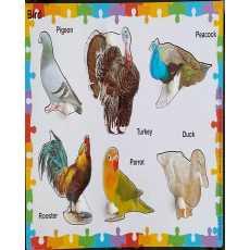 Amir Traderz Bird 6 Pcs Knob Puzzle