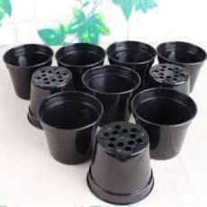 PACK OF 05-Plastic Flowering Pot -14'H CM* 15'D CM
