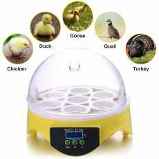 Mini 7 Egg Incubator Poultry Incubator Brooder Digital Temperature Hatchery...
