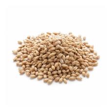 Joo (Barley) (100% Premium Quality By Tabibi 50Gm) جو