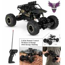 Team Maxis 03 rechargeable RC Car buggy black 2.4ghz Remote Control car four...