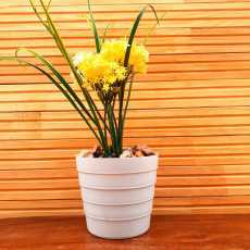 Artificial Flowers With Wooden Pot For Home Decoration Plant for Office Table...
