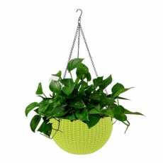 Beautiful Plastic Hanging Planter Flower Pot With Hanging Chain - Green