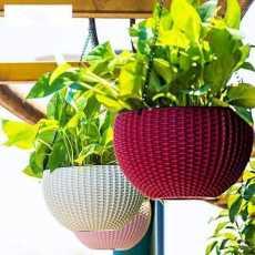 Beautiful Plastic Hanging Planter Flower Pot Hanging Chain Planter- RANDOM