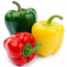 Colored capsicum Bell Paper / sweet pepper