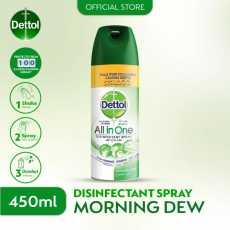 DETTOL ANTISEPTIC DISINFECTANT SPRAY - MORNING DEW