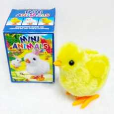 Beautiful Fancy Choza Funny Chick in Box for Kids - Large