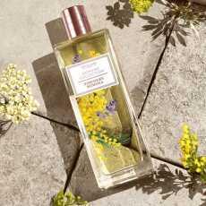 Women's Collection Powdery Mimosa Eau de toilette