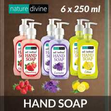 Pack of 6 (Strawberry, Lavender, Citrus) Hand Wash Soap 250 ml