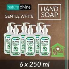 Pack of 6 Antibacterial Gentle White Hand Wash Soap with Chloroxylenol 250 ml