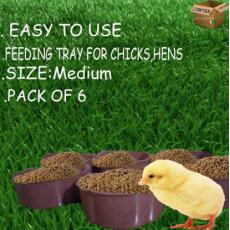 Feeding Tray For hens, chicks and birds Medium size
