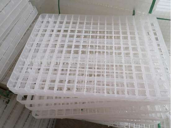 221 eggs Incubator Tray for Quil (Btair)