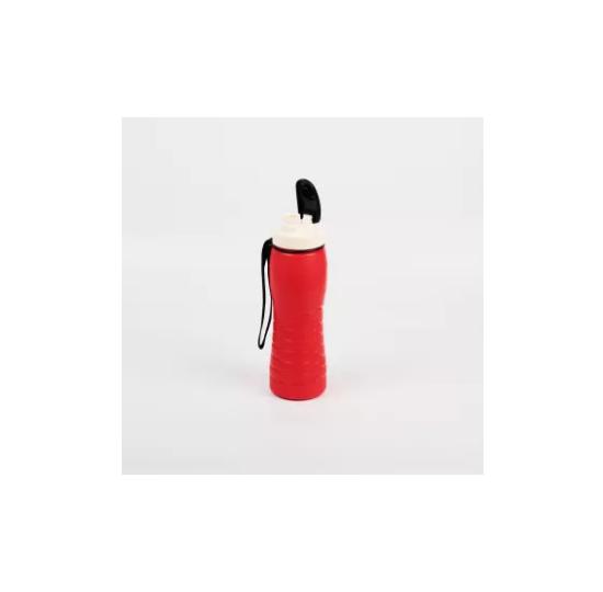 Appollo Spring Thermic Bottle (500 ml)