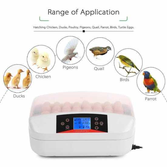 32 Egg Automatic Incubator Digital Hatchery Machine With Led
