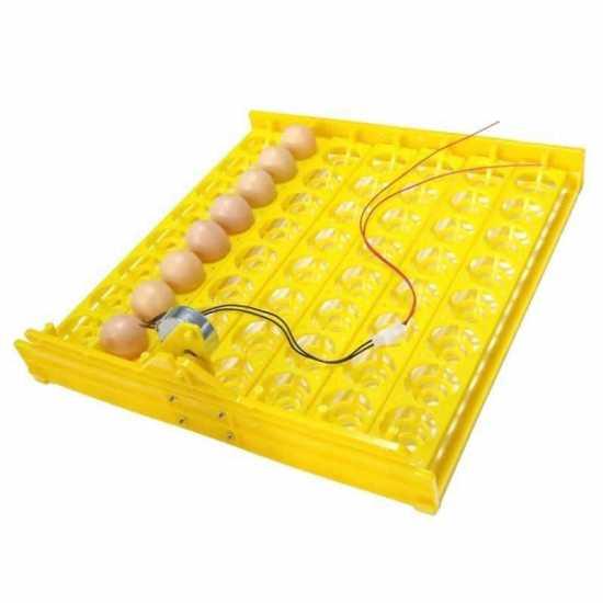 56 Eggs Incubator Tray for Chicken Duck Birds