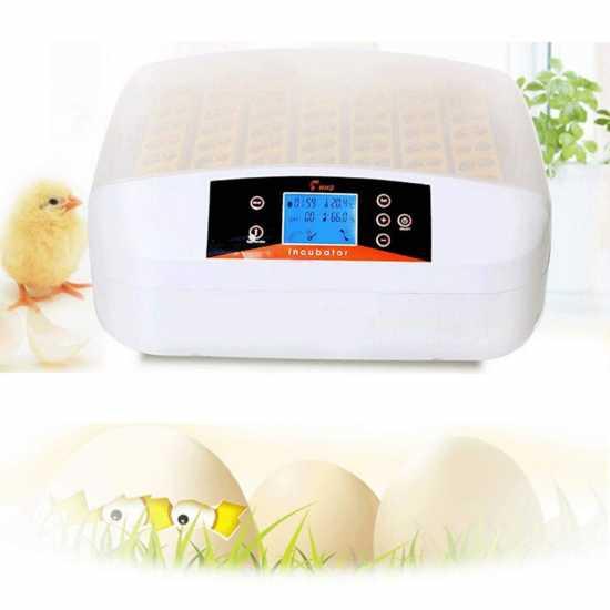 56 Egg Automatic Incubator Digital Hatchery Machine With Led