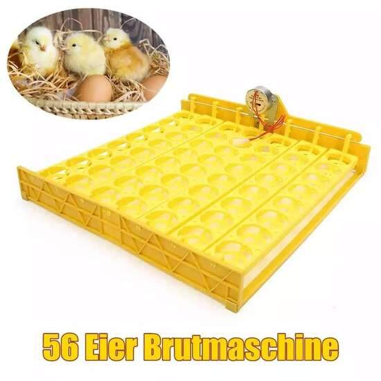 HHD 48 Eggs Incubator Auto Eggs Turning Tray for Chicken Duck Birds + Timer...